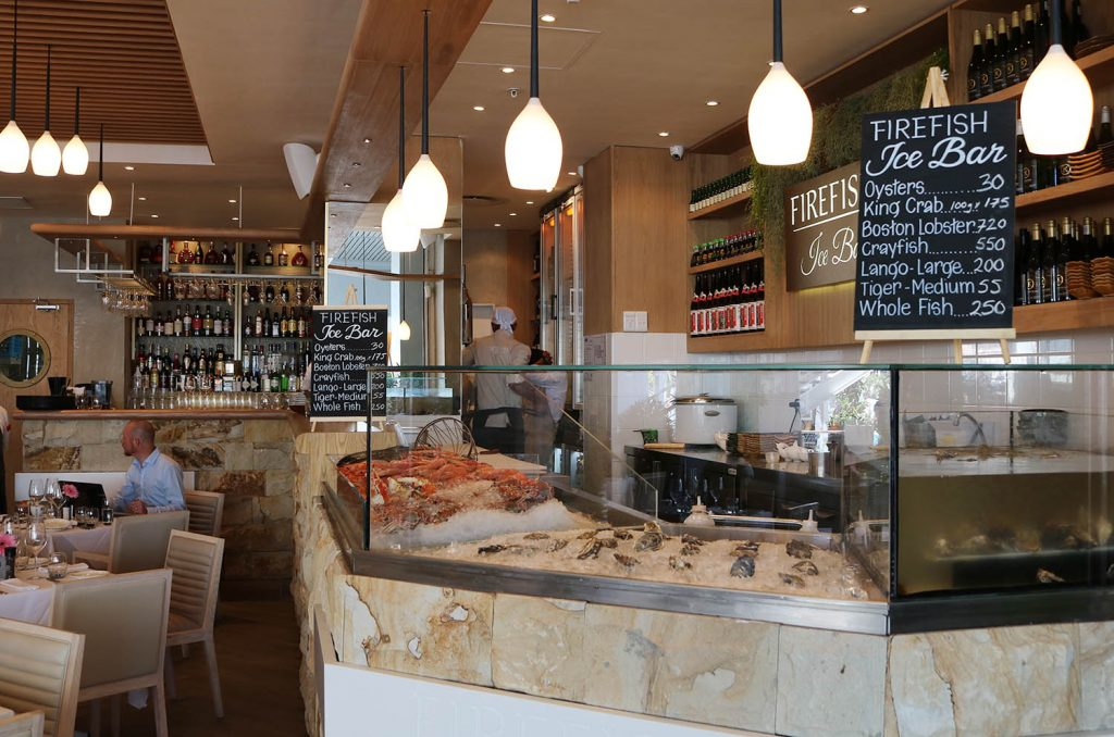 Firefish Cape Town Review 9Lives 9