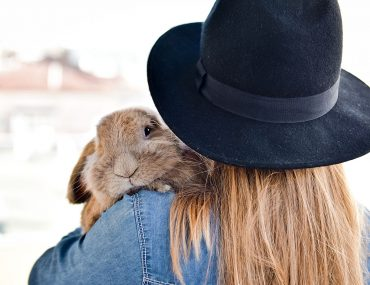 Animal Testing Beauty Without Cruelty