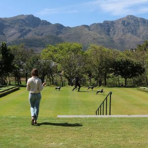 Get ready for a weekend of art in Franschhoek