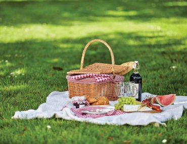 9lives-Pack-Your-Own-Picnic