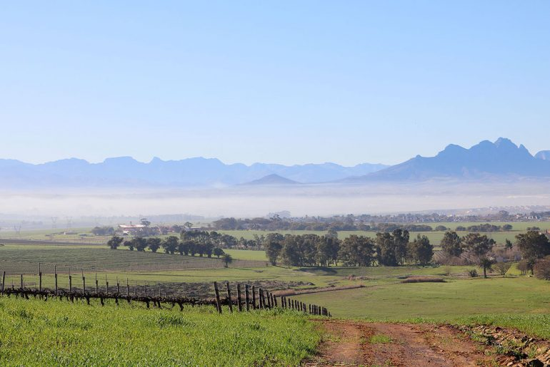 What to do in Durbanville