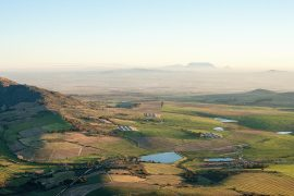 PaardebergCountry Pinotage Festival