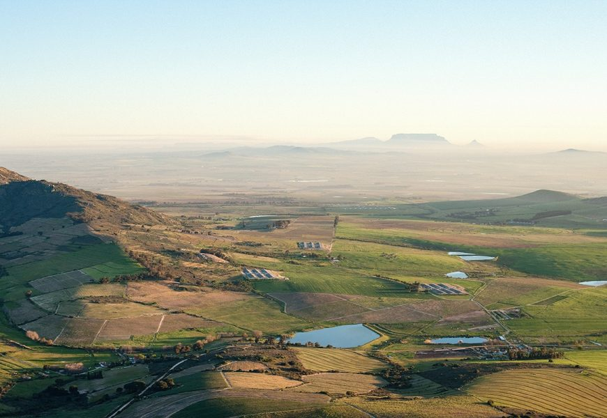 Join the PaardebergCountry Pinotage Festival this October