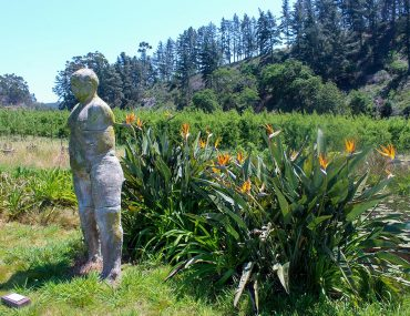 elgin-wildekrans-open-gardens